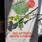 Paslaptingas medžių gyvenimas: knyga, keičianti ne tik gyvenimą, bet ir sapnus